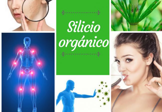 curar con silicio orgánico