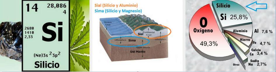 Silicio orgánico en la tierra