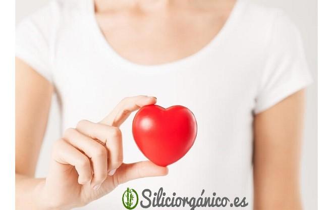 silicio y cardiovascular