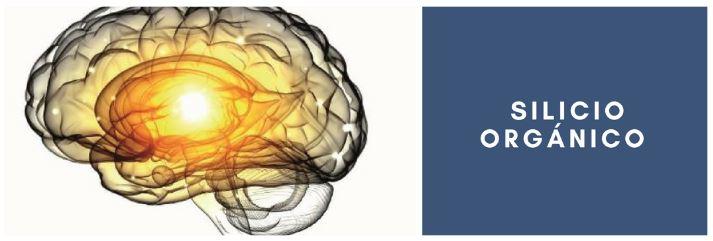 silicio y neuronas