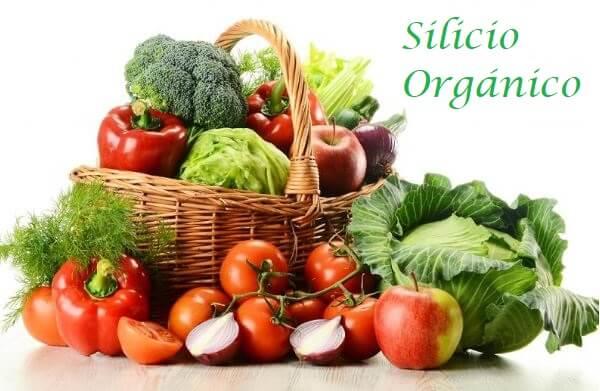 Alimentos con Silicio organico