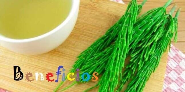 Beneficios Silicio Organico en nuestra salud