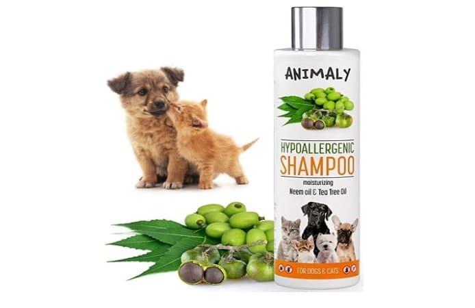 aceite natural de neem para mascotas