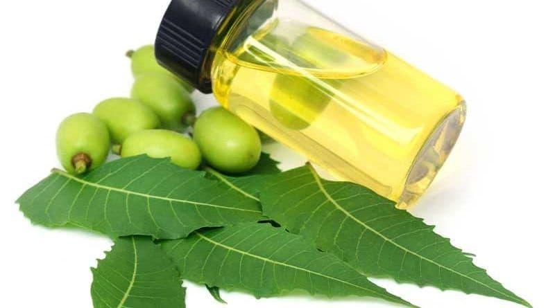 aplicaciones caseras del aceite del neem