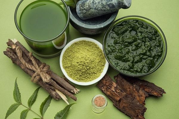 farmacia de arbol de neem